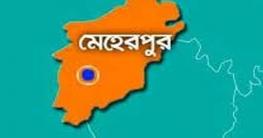 বীজ উৎপাদনে সমৃদ্ধ মেহেরপুর জেলা