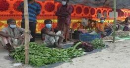 কুষ্টিয়ায় চালু হয়েছে বিষমুক্ত সবজির বাজার