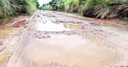 ভেড়ামারা-রায়টা সড়কের অবস্থা বেহাল
